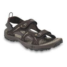 The North Face Hedgehog Sandal for Men - Demitasse Brown/Algae Yellow