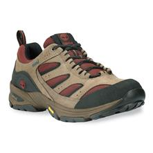 Timberland Ledge 2.0 Leather with Gore-Tex Membrane Low Hiking Shoes for Men