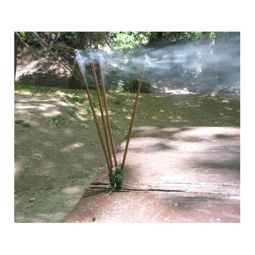 Grand Trunk Organic Mosquito Repellent Incense (16)