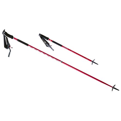 photo: MSR Flight 2 alpine touring/telemark pole