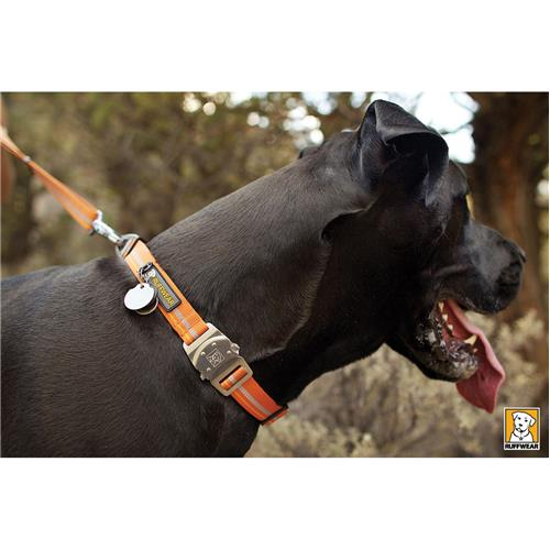 photo: Ruffwear Top Rope Collar dog collar
